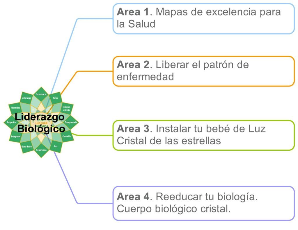 Areas de Luz Pura para el liderazgo biologico