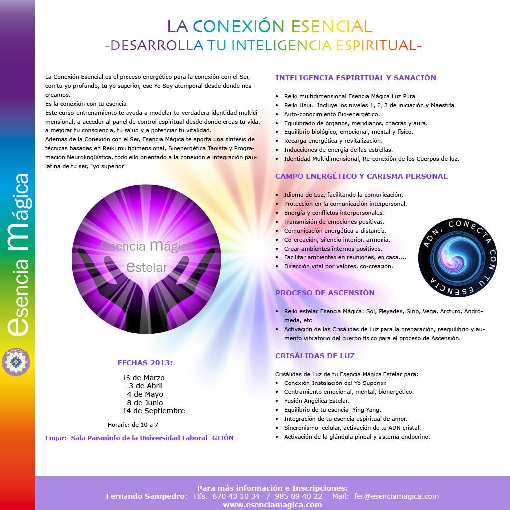 folleto la conexión esencial 2013